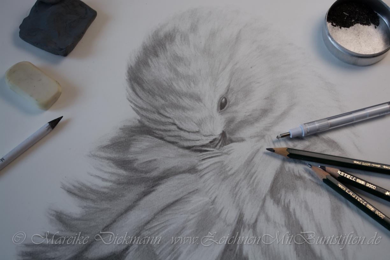 Zeichnen mit Bleistift und Graphit