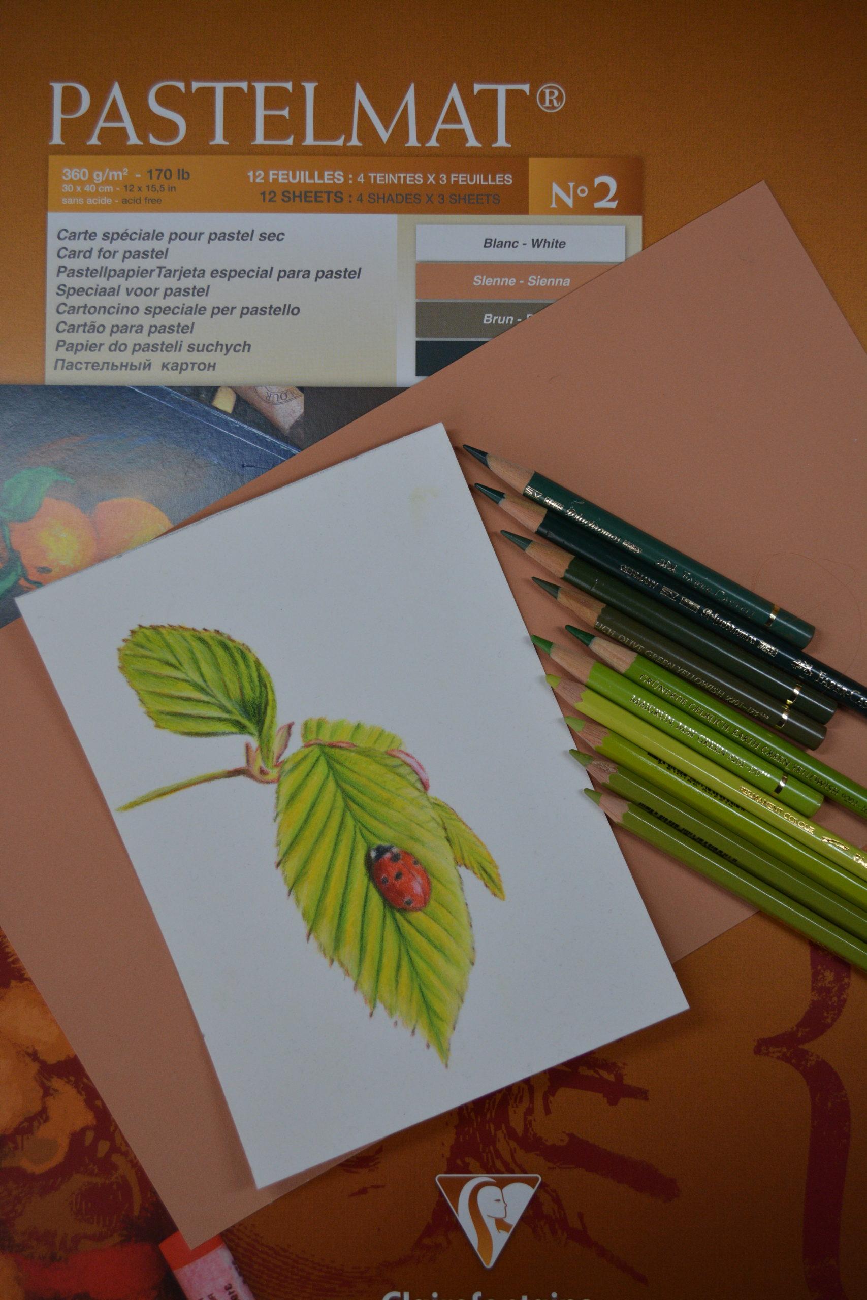 Zeichnen mit Buntstiften auf Pastelmatpapier